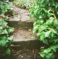 Astoria, OR- steps by Goofgirl