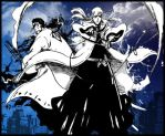 Shunsui and Ukitake in Action by Juengling
