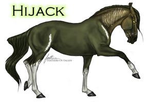 Hijack .:My OC:. by Shattered-Roses