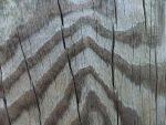 Wood Texture 32 by dknucklesstock