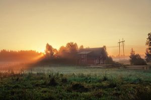 Morning sun by dSavin