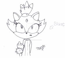 Blaze the cat by Lovely-Tsandy