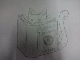 A Small Cat Reading by Giulliachan