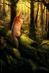 Dawn of the Fox by Tatchit