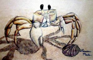 Ghost Crab by PonderosaPower