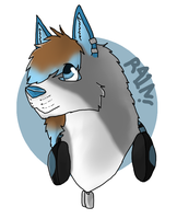 R41N Badge 2 by jediknightcharlie