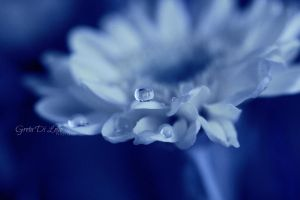 Blue drop in a blue universe. by Dolceparanoia