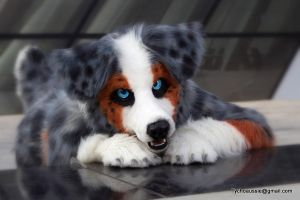 Let's play! # 1 of Tycho Aussie Series 1 by Tychoaussie
