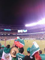 When Mexico made a goal! by Lolita64