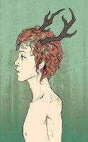 Fawn by 73554B