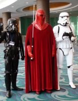 Emperor's Royal Guard and 501st Legion Troopers by trivto