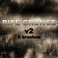 RIPE GRUNGE v2 - 5 brushes by RazorICE