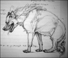 Study Notes Sketches: Hyena by TheUrbanFox