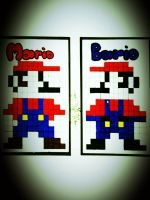 MARIO + BARIO (father) by SilvarEnO