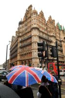 The Russell in the rain 1 by wildplaces