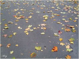 leaves on the ground by MsAiry