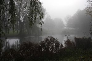 Misty Lake II by webworm