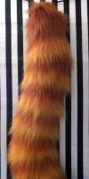 red panda tail side by fenrirschild