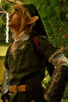 Legend Of Zelda:Link by akosikeith