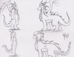 *Important* Dragon Type doubt by Dragon-Wish