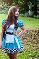 Alice in Wonderland 1 by fancydressqueen