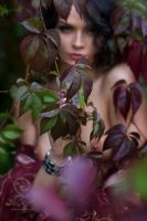 Autumn Leaves by Vitaly-Sokol
