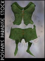 Fairy Leaf Outfit 001 by poserfan-stock