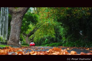 Its Autumn Again  Yay by sumangal16