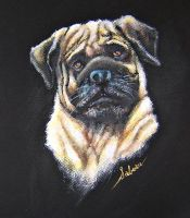 PUG FOR JEN by RealNsurreal