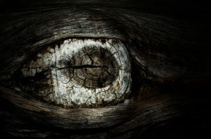 The Eye by jtmessin