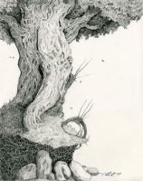 Tree on a Bank by shadowgirl