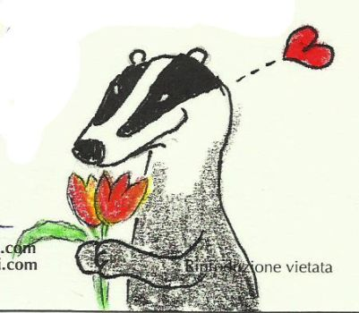 Badger and tulips by camaseiz