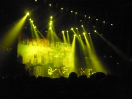 Buried Alive Tour (1) by Kristin-BVB-Fan