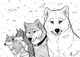 Wolves of The Flower by MayhWolf