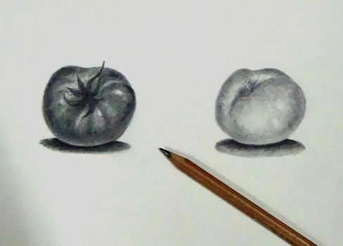 practicing graphite still life by AliceColours