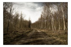 Desolate Road by AndersStangl