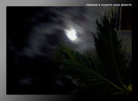 Puerto Rico Nights by FooDogTenchi