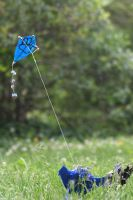Flying a Kite 3 by Dellessanna