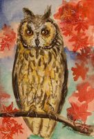 Watercolor and Ink #14 - Owl of a Season by Oksana007