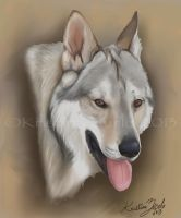 Wolf Dog commission by NatsumeWolf