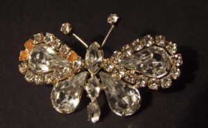 Butterfly Broach Stock by emothic-stock
