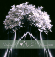 Pack Backgrounds- Magic Tree by ROSASINMAS