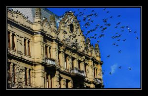 The House with Pigeons by purpleseller