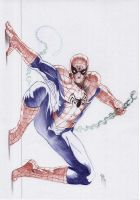 Spiderman by Philippe-Bringel