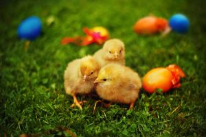 Happy Easter by all17