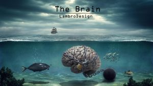 TheBrain by LambroDesign