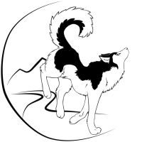 ..:: Husky Tattoo Design ::.. by DaRkRaVeNsTeAr