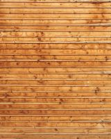 Wood Texture - 29 by AGF81