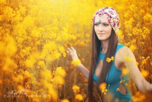 Field of Gold by NatVon