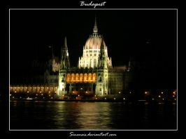 Budapest - Parlamento Parte II by Sinensis